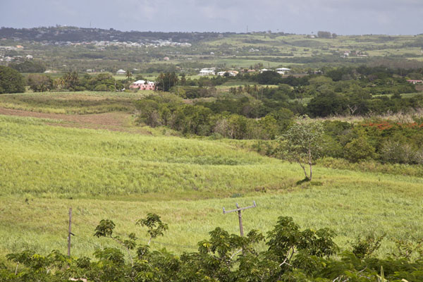 View over the central part of Barbados from Gun Hill Signal Station - 巴贝多