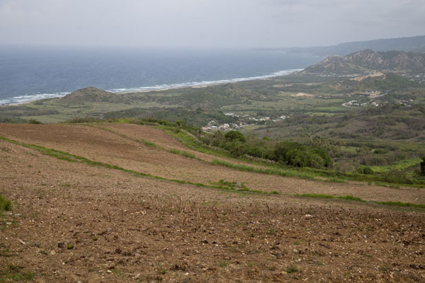 Looking south from Cherry Tree Hill | Barbados binnenland | Barbados
