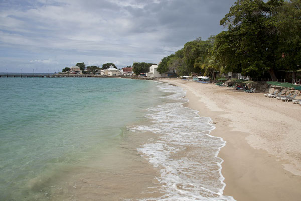 Foto de Turquoise and white waves arriving at the attractive beach of Speightstown - Barbados - América
