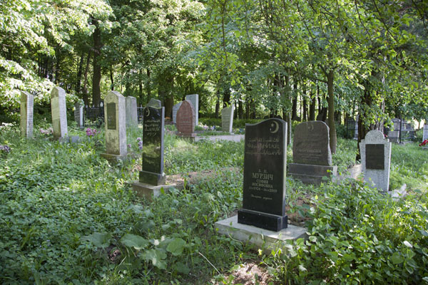 Foto van Overview of the Tatar tombstonesMir - Wit-Rusland