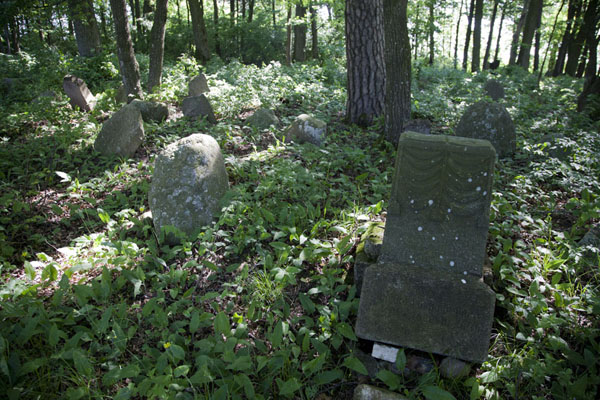 Foto van The small Tatar cemetery contains a lot of gravesMir - Wit-Rusland