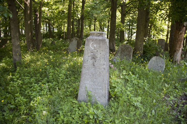 Foto van Tombstones amidst the grass of the cemetery under the treesMir - Wit-Rusland