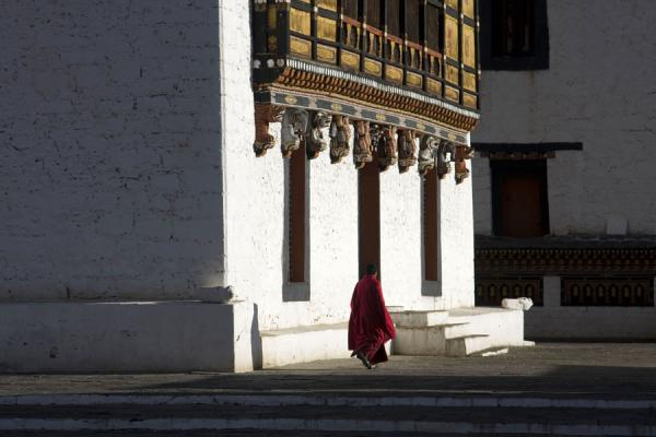 Monk walking in Thimpu Dzong - 不丹
