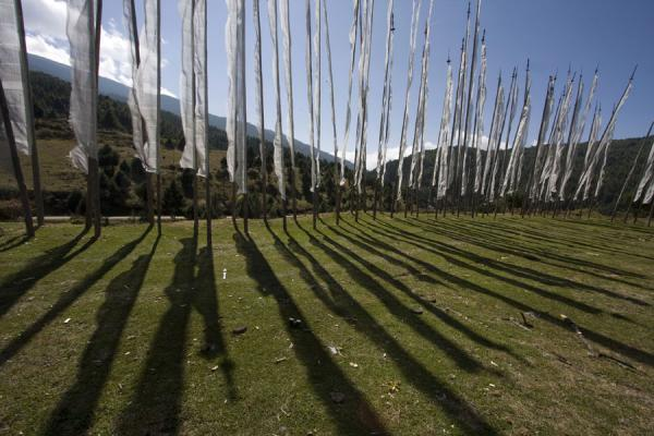 Picture of Bhutanese prayer flags (Bhutan): Prayer flags in the landscape near Ura