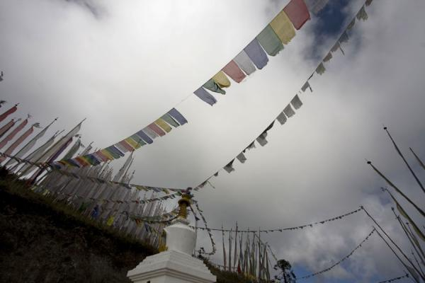 Prayer flags flying high over Yotang La mountain pass | Bhutanese prayer flags | Bhutan