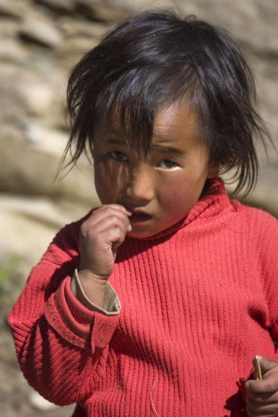Picture of Young girl looking at the photographer in central Bhutan