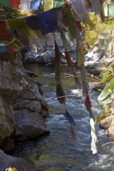 Prayer flags over Tang Chhu river at Burning Lake | Burning Lake | Bhutan