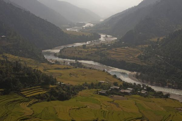 Rice terraces and Mo Chhu river as seen from the top of the chorten | Khamsum Yuelley Namgyal Chorten | Bhutan