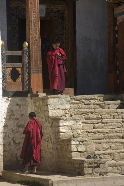 Picture of Petsheling monastery (Bhutan): Young Buddhist monks around Petsheling monastery