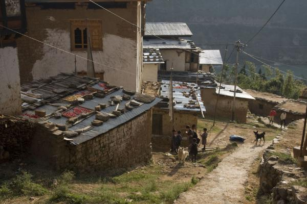 Picture of Rinchengang (Bhutan): Village scene in Rinchengang
