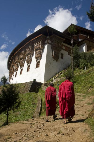 Monks walking towards Tango Monastery | Tango Monastery | Bhutan