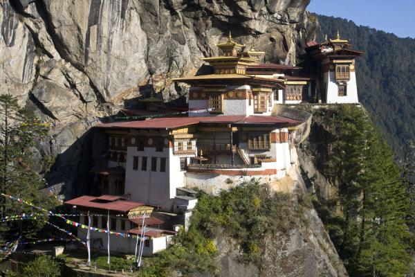 Picture of Tiger Nest Monastery
