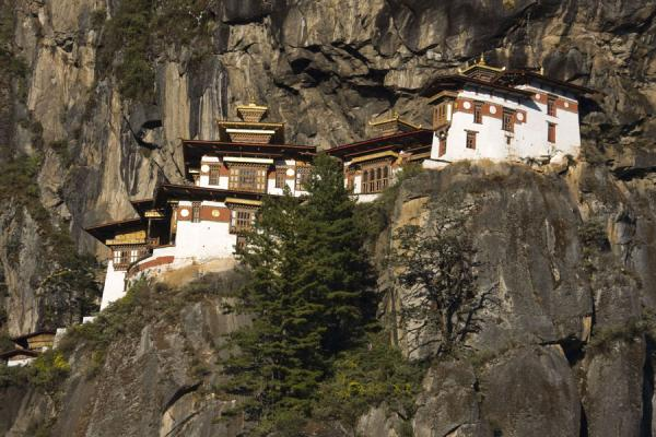 Picture of Bhutan (Taktsang or Tiger Nest Monastery seen from below)