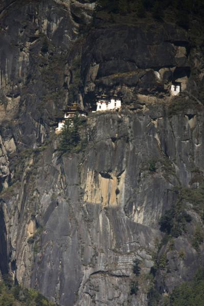 Picture of Tiger Nest Monastery built against the cliffs