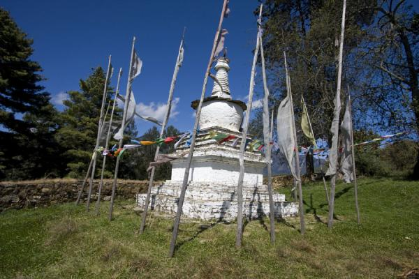 Picture of Chorten and prayer flags near Ugyen Chholing Palace