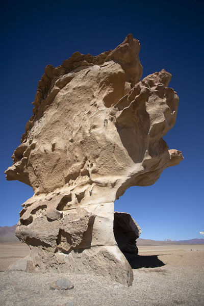Photo de One of the most fragile rock formations of the stone forestForêt de pierres de Eduardo Avaroa - la Bolivie