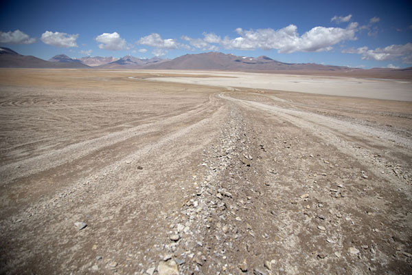 Tracks in the plains of southwest Bolivia | Southwest Bolivia landscapes | Bolivia