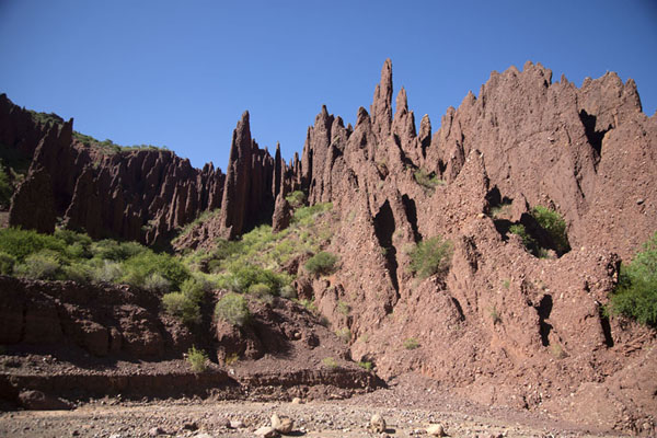 Foto di Red-coloured formations in the small canyon - Bolivia - America