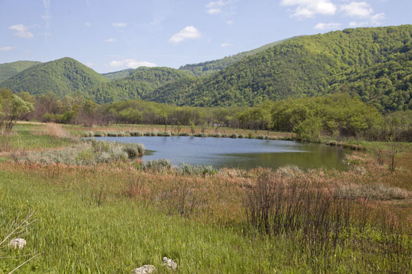 Picture of Pliva Lakes (Bosnia and Herzegovina): The large Pliva lake near the village of Jezero