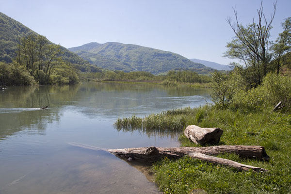 Picture of Pliva Lakes (Bosnia and Herzegovina): Shoreline of the large Pliva lake