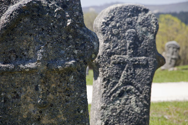 Picture of Stecci Rostovo (Bosnia and Herzegovina): Carved decorations on medieval tombstones, or stećci, near Rostovo