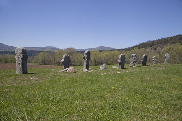 Row of stecak, or medieval tombstones, in the landscape near Rostovo | Stecci Rostovo | Bosnia and Herzegovina