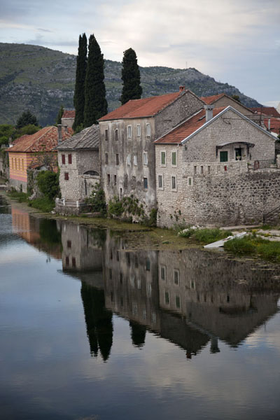 Reflection of houses and poplars in the river Trebišnjica | Trebinje | Bosnia and Herzegovina