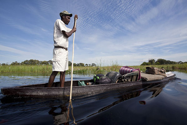 Picture of Poling a mokoro through the Okavango delta - Botswana - Africa