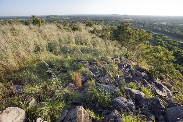 Foto di View from Bushman Painting Hill, one of the hills jutting out of the flat Savuti landscapeSavuti - Botswana