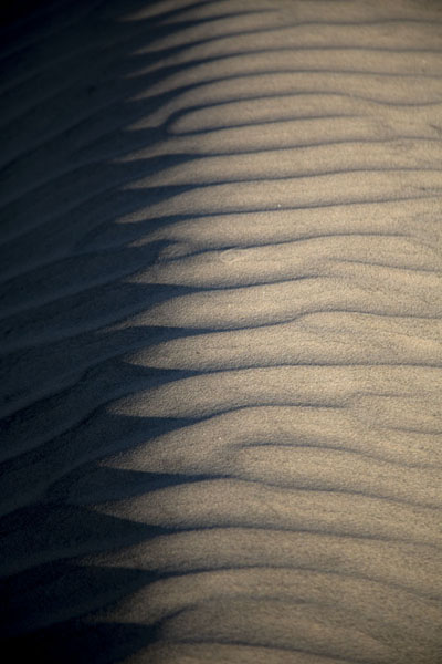 Close-up of the top of a sand dune | Dunes de Cumbuco | le Brésil