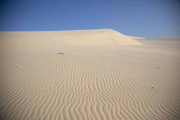 Foto de Endless lines in the sandy landscapeCumbuco - Brazil