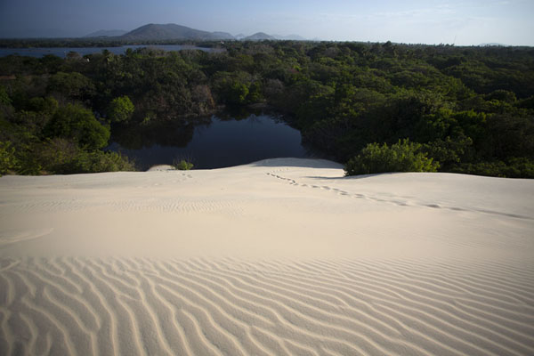Sandy hill running down to Banana Lake | Cumbuco sand dunes | Brazil