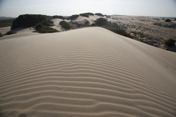 Foto van View over one of the many sand dunes towards the west - Brazilië - Amerika