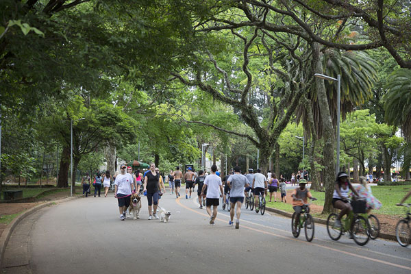 People walking on one of the large roads in the park | Parque Ibirapuera | Brazil