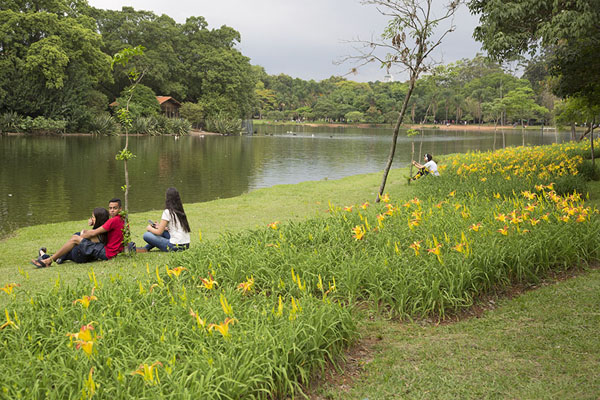 People sitting amidst the flowers at one of the lakes | Parco Ibirapuera | Brasile