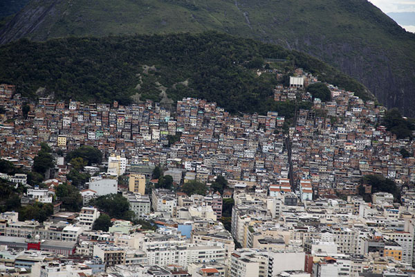 One of the many favelas of Rio sprawling over a hill | Rio vanuit de lucht | Brazilië