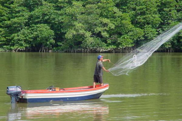 Foto van Fishing in the Brunei riverBukit Patoi - Brunei