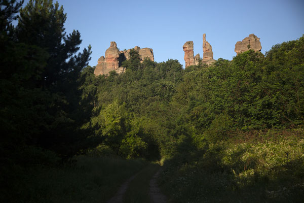 Slender rock pillars towering above the forest near Belogradchik | Rotsen van Belogradchik | Bulgarije