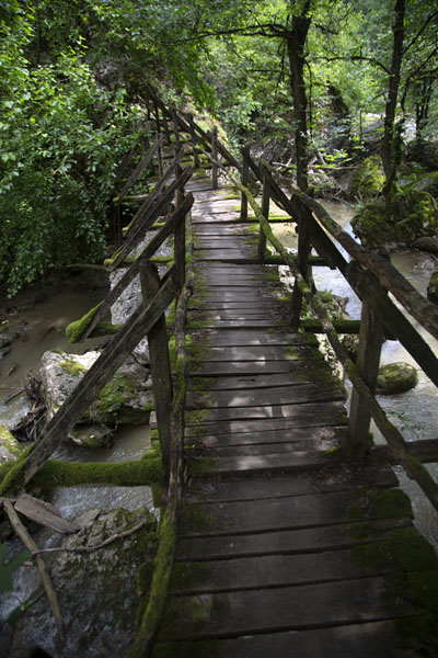 Foto van Wooden bridge spanning the Negovanka river near the waterfall - Bulgarije - Europa