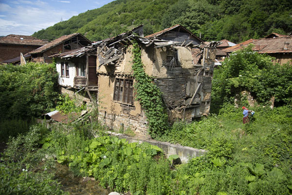 Picture of Houses lining the riverside in PirinPirin - Bulgaria