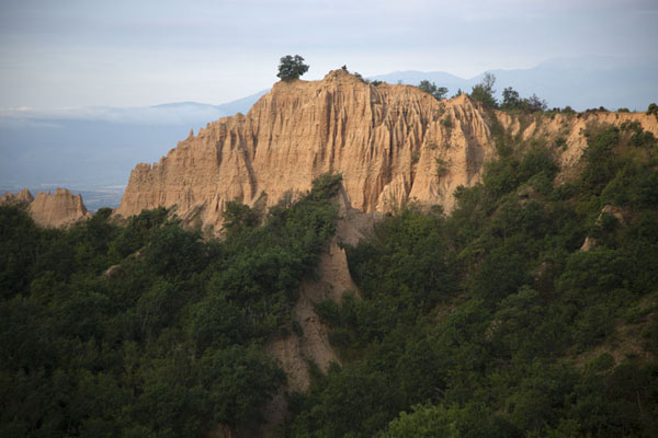 Picture of Badlands with forest between Rozhen and MelnikRozhen - Bulgaria
