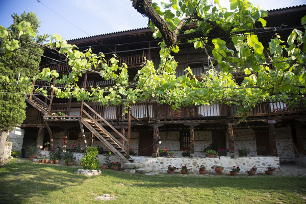 The courtyard of Rozhen Monastery with grapevines | Rozhen Monastery | Bulgaria
