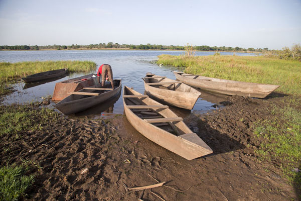 Pirogues docked at the banks of Tengrela Lake | Tengrela Lake | Burkina Faso