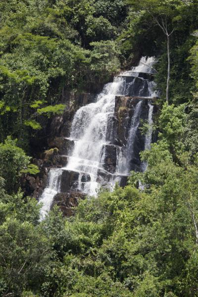 Foto de Waterfall surrounded by forest at the Chutes de la Karera - Burundi - Africa
