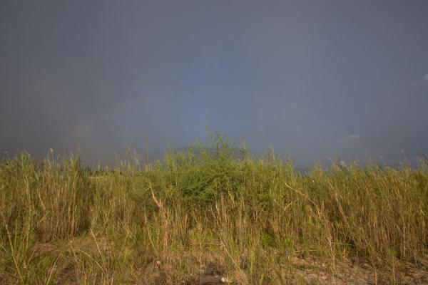 Foto di Rainbow in the dark skies over the grassy coastline of Saga beachGrassfields Ring Road - Burundi
