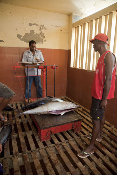 Foto de Tuna being weighed at the fish market of Mindelo - Cabo Verde - Africa