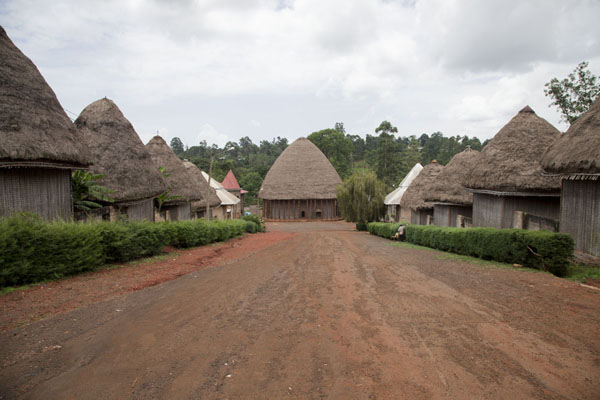 The main lane with houses and Case at the chefferie of Bandjoun | Bandjoun chefferie | Cameroon