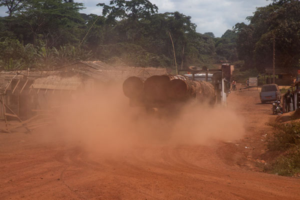 Picture of Bertoua to Libongo (Cameroon): Lorry with logs driving over the dusty roads of the southeast of Cameroon