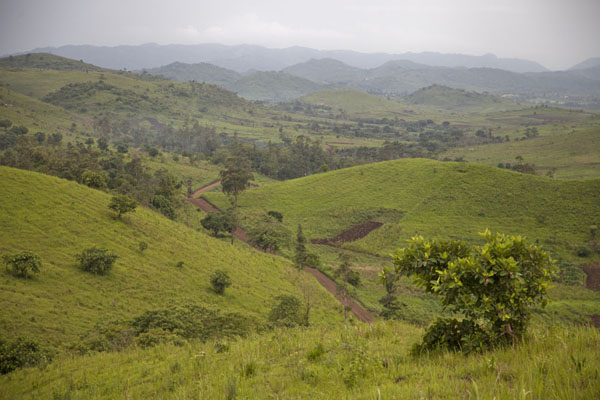 The Grassfields landscape near Wum | Grassfields Ring Road | Cameroon