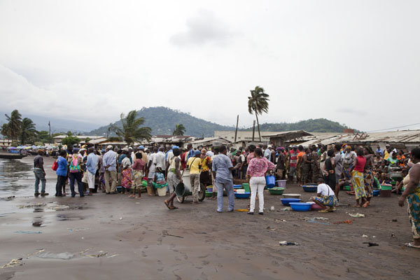 Foto van Catch is coming in: people storming the beach after the arrival of a bigger boatLimbe - Kameroen